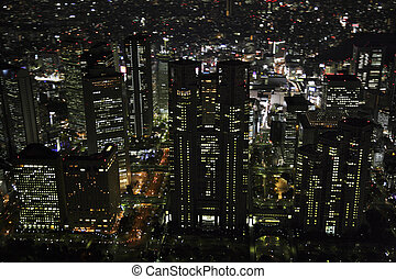 Aerial view of the Shinjuku subcenter areas