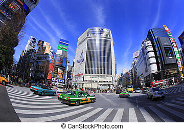 Around Scramble Crossing in front of Shibuya Station