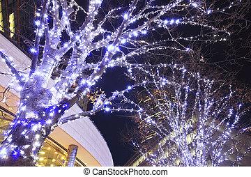 Christmas illuminations of Roppongi