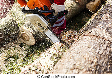 Man sawing a log in his back yard with orange saw