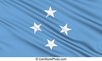 Micronesia Flag, with real structure of a fabric