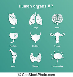 Vector set of paper icons with human organs - Vector paper...