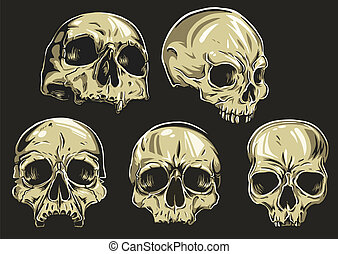 Skulls Vector Set - set of 5 skulls To removechange the fill...