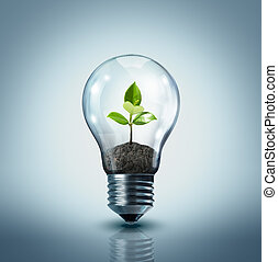 ecological idea - plant in lamp - ecological idea - plant in...