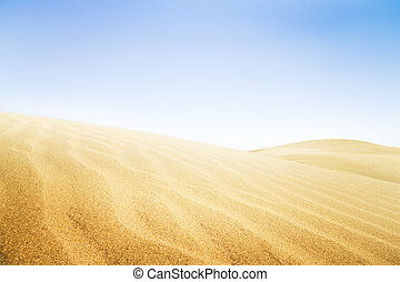 Sand dunes in sunny day.