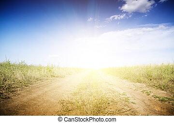 Suciedad, camino, por, verde, campos