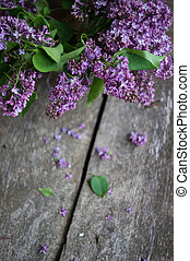 Lilac flowers in the vase - Lilac flowers in a vase on the...
