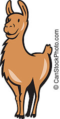 Llama Cartoon - Illustration of a llama standing facing...