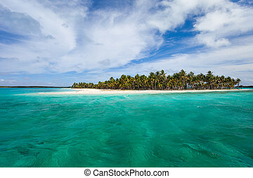 Tropical island - Idyllic tropical island and turquoise...