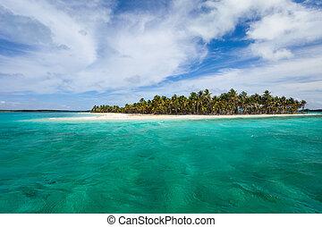 Tropical island - Idyllic tropical island and turquoise...