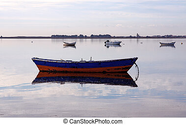 Traditional fishing boat - Portuguese traditional fishing...