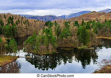 Lake District Cumbria Tarn Hows
