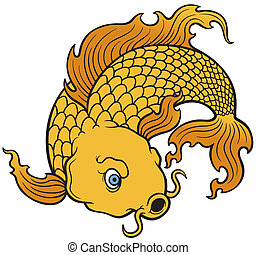 Koi fish - vector illustration of Koi fish