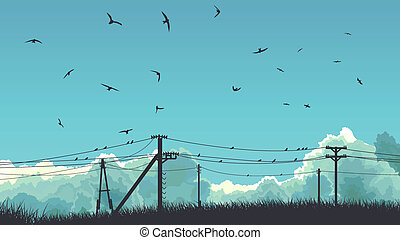 Birds in sky and on power line. - Horizontal abstract...