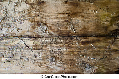 rough wooden background - a background of rough wood