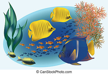 Marine life with tropical fishes, vector illustration