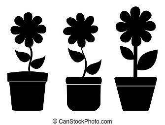 flower pots with shadow