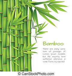 Realistic bamboo background - Realistic green bamboo plant...