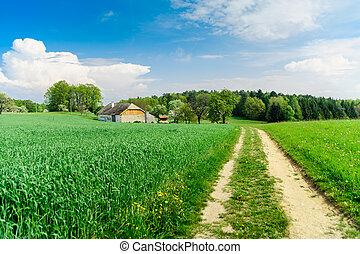 Rural Landscape in Upper Austria