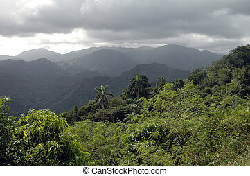 Sierra Maestra - Rainy Day in the mountains of Sierra...