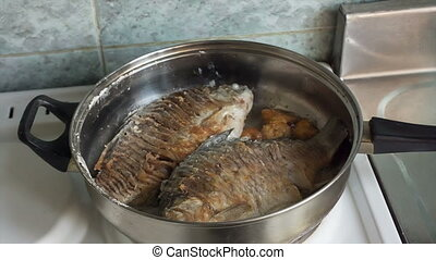 Fish - Two crucian fried in a pan