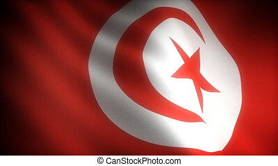 Flag of Tunusia seamless