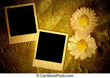 Two empty instant photo frames on vintage background with...