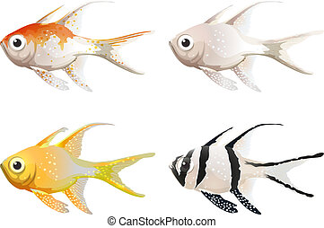 Sea creatures - Illustration of the sea creatures on a white...