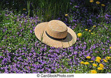 Amish straw hat at spring time - Amish straw hay laying in a...
