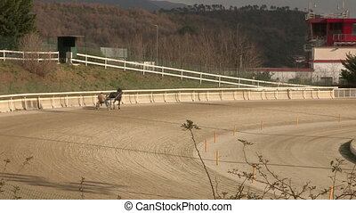 Horses training in hippodrome in Italy