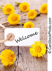 Tag with Welcome and yellow Flowers on Wood