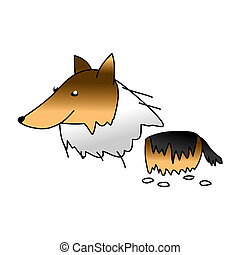 Collie Dog - Pet