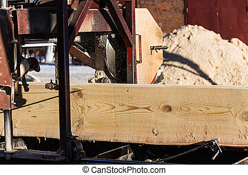 sawmill - sawdust fly from under a tree at the sawmill