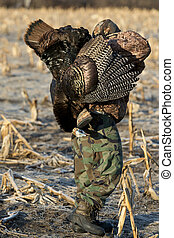 Turkey Hunter - Young hunter with a Wild Turkey