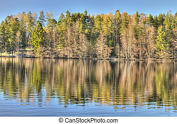 Idyllic forest lake - Beautiful reflections on an idyllic...
