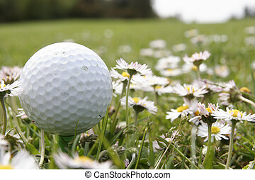 golf ball in flowers - it is of golf ball on a tee in middle...