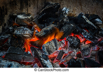Fire on charcoal. - Fire on charcoal for food grilling in an...