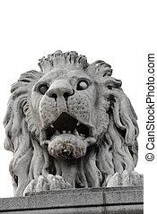 Stone lion - roaring stone lion sculpture closeup