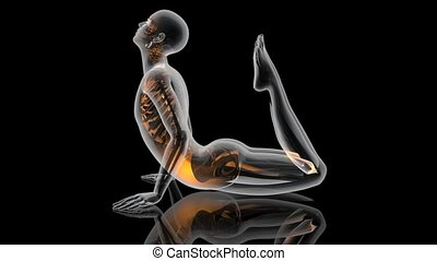 Flowing Yoga Energy - A lookalike of the King Cobra Yoga...