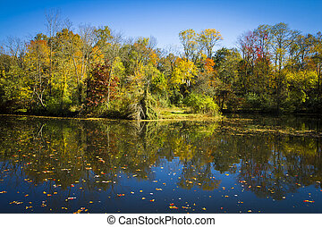 Fall Reflections on the Delaware and Raritan Canal -...