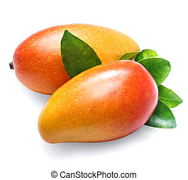 Mango on white background. Organic food. - Two ripe Mango...