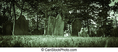 Old Cemeteries - Ground View Panorama - a ground level...