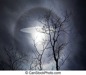 UFO with Trees - UFO alien space ship rising behind the...