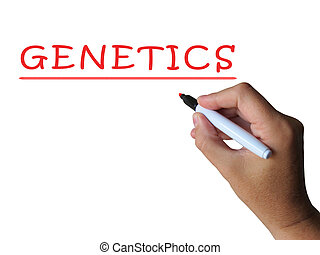 Genetics Word Shows Genetic Makeup And Anatomy - Genetics...