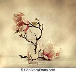blooming magnolia  with retro filter effect