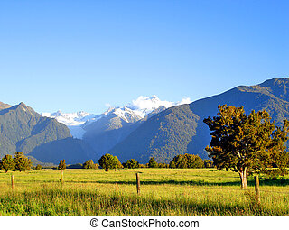 Evening light over a grassy field in front of Mount Cook and...