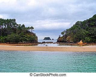 Zealand, 中で, 湾, 島, 新しい, 島