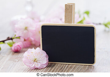 pink cherry flowers with black chalk board - pink cherry...