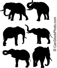 Elephants  - Silhouettes of elephants in different poses
