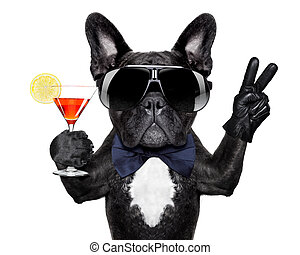 cocktail dog - dog with martini cocktail and victory or...